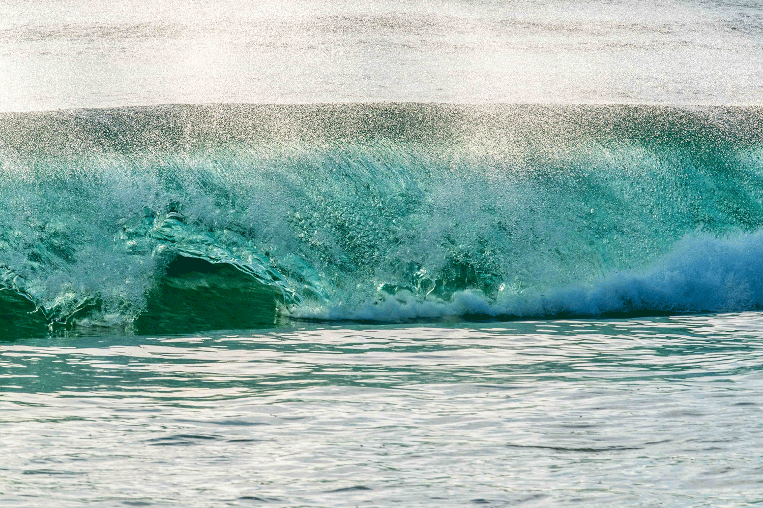 Fantastic Wave in California
