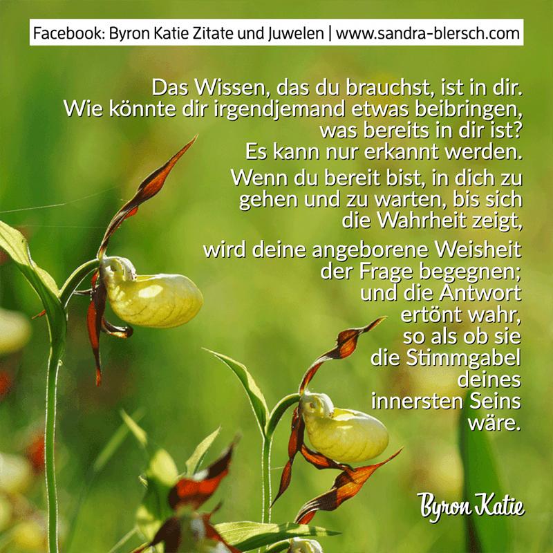 Byron Katie Zitat Das Wissen, das du brauchst, ist in dir
